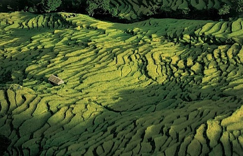 pokhara.png