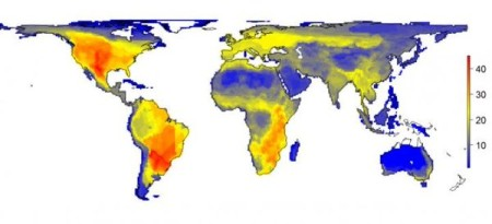 Fig 1: The natural diversity of large mammals is shown as it would appear without the impact of modern man. The figure shows the variation in the number of large mammals (>45kg) that would have occurred per 100x100km grid cell. The numbers on the scale indicate the number of species. Credit: Soren Faurby.