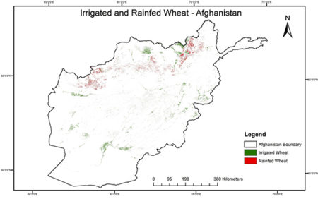 Exploring Afghanistan's wheat