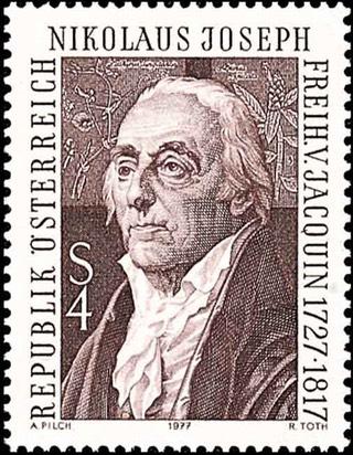 Austrian postage stamp of von Jacquin